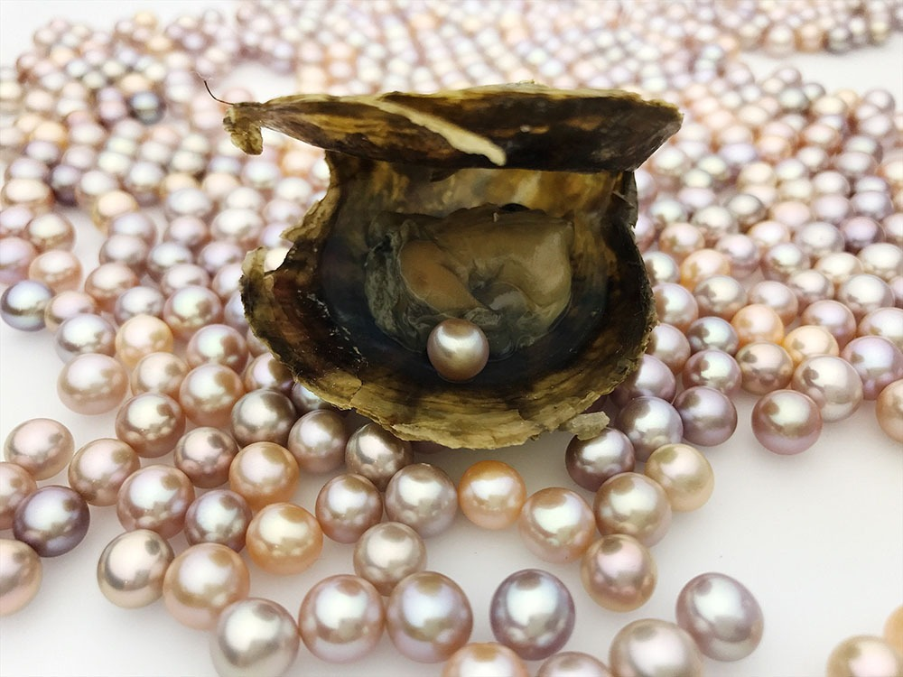 Aloha Pearls Inc. Products