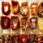 Amber Necklace Wholesale Lot Variations