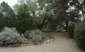 attraction-botanical-gardens