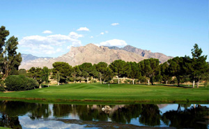 attraction-omni-golfing