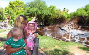 attraction-reid-park-zoo