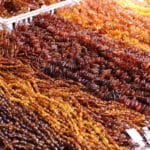 Amber Beads at the JOGS Tucson Gem & Jewelry Show