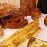 Amber Specimens at the JOGS Tucson Gem & Jewelry Show